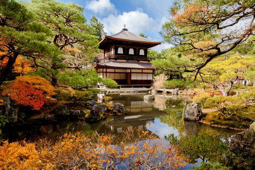 本州+奈良高品质半自助6日
