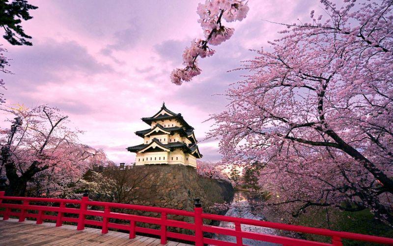 东京+北海道半自助6日
